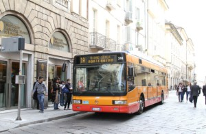 Autobus_Pavia